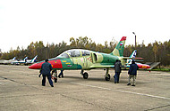 Fly the L-39 Over Russia
