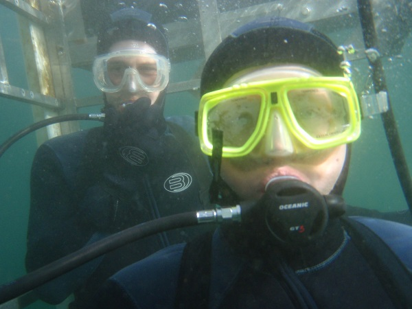 Halloween shark dive in the Farallones