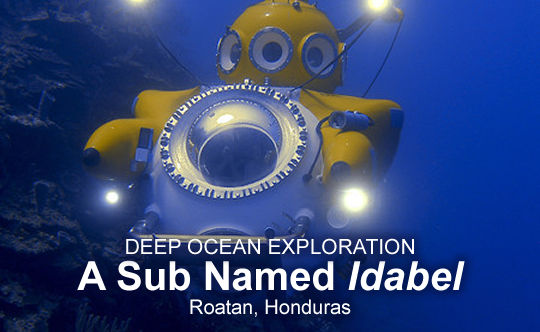 Explore the Ocean Deep in a Sub Named Idabel - Roatan, Honduras