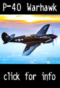 Fly the P-40 Warhawk in Florida
