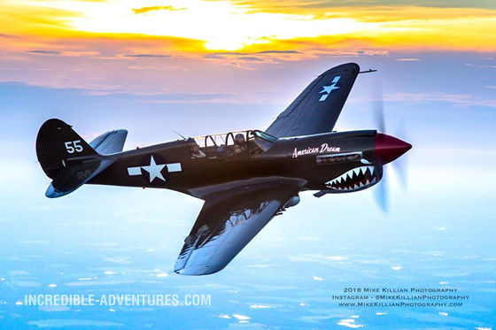 Fly the P-40 Warhawk